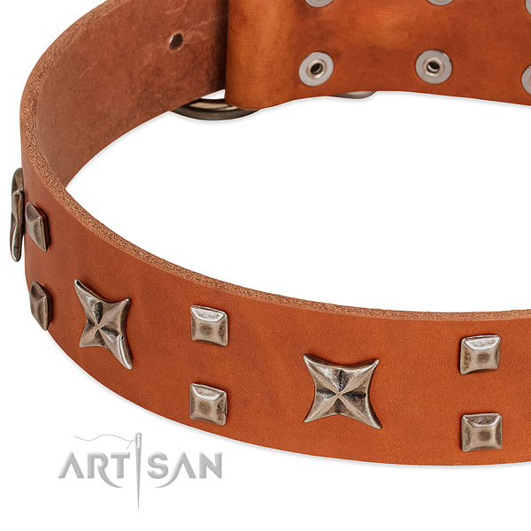 Gentle to touch full grain leather dog collar with adornments for daily use