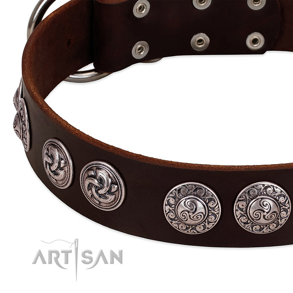 Incredible full grain natural leather collar for your pet walking