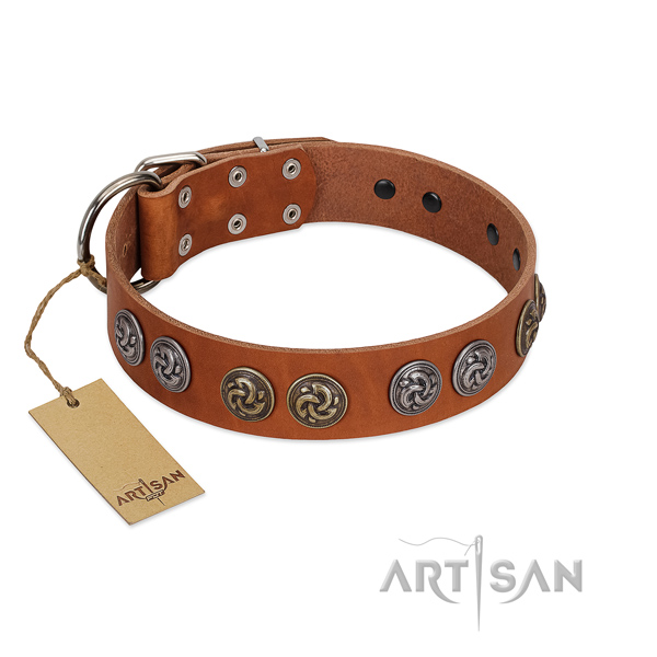Rust resistant traditional buckle on full grain genuine leather dog collar for comfortable wearing
