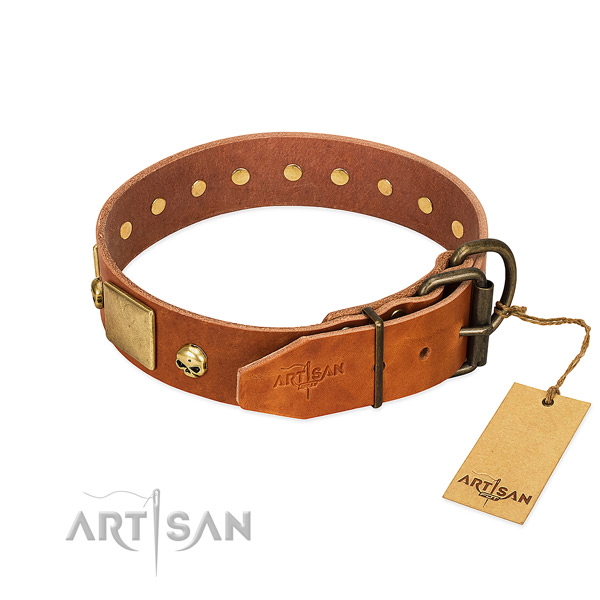 Top rate full grain leather dog collar with rust resistant studs