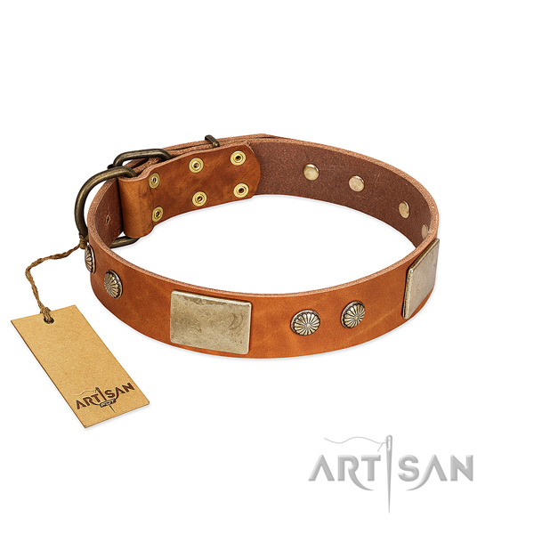 Easy adjustable natural genuine leather dog collar for basic training your four-legged friend