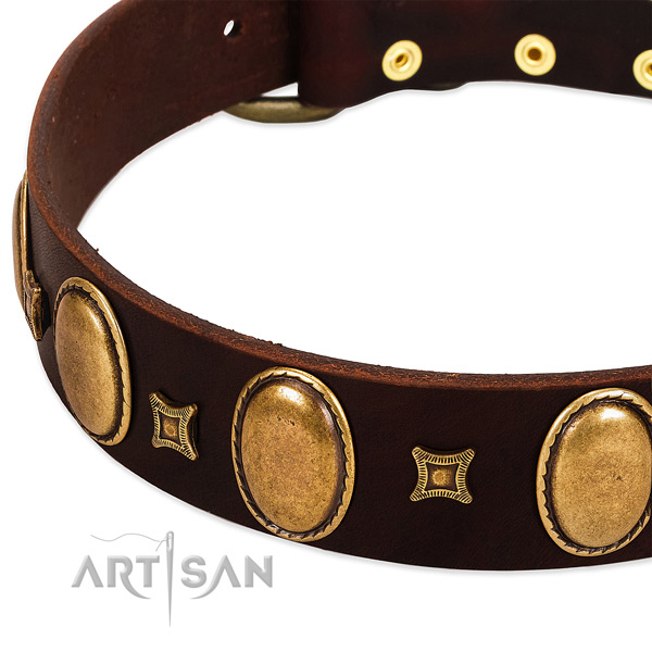 Genuine leather dog collar with durable fittings for everyday use