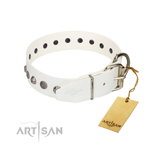 Rust resistant D-ring on genuine leather dog collar for daily walking your four-legged friend