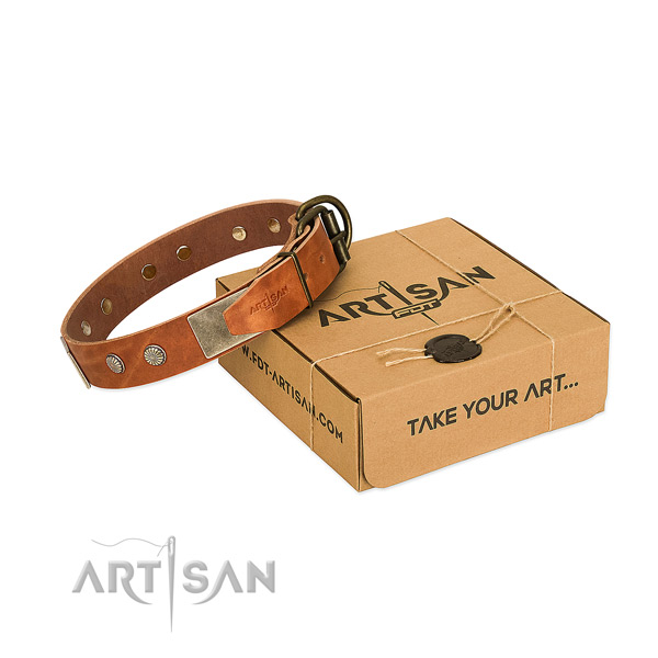 Reliable adornments on dog collar for easy wearing