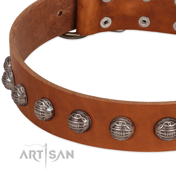 Inimitable leather dog collar with corrosion proof decorations