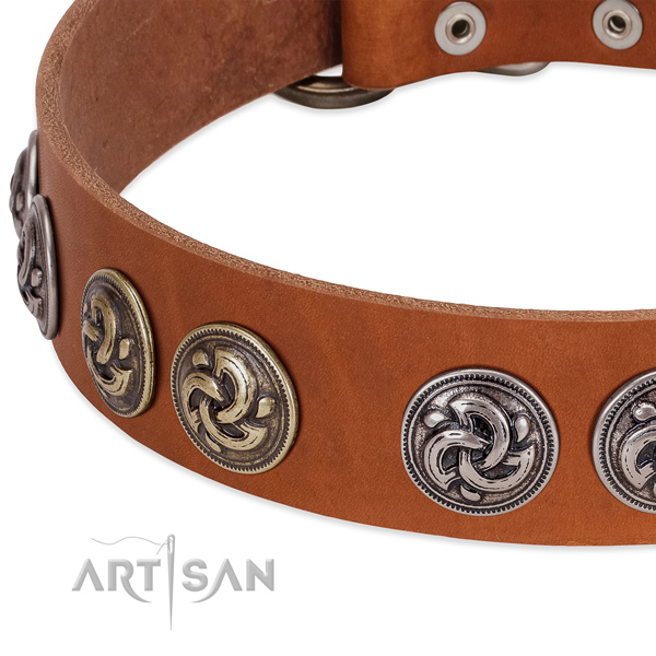 Significant full grain leather collar for your four-legged friend stylish walks
