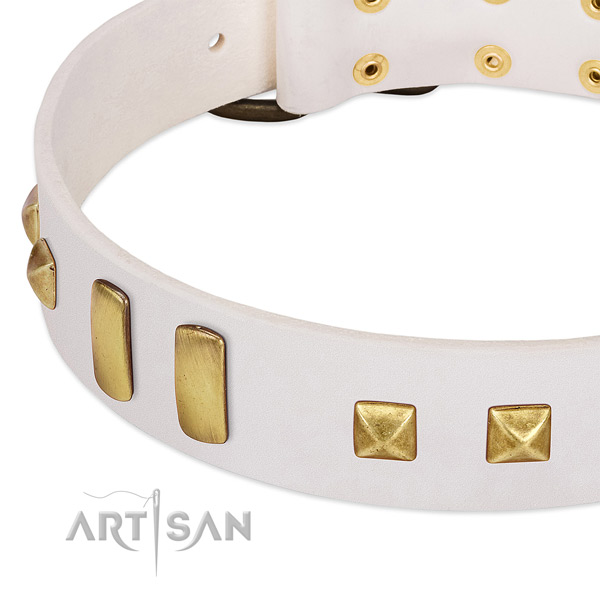 Soft genuine leather dog collar with embellishments for everyday walking
