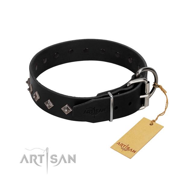 Full grain leather dog collar with stylish design decorations for your canine