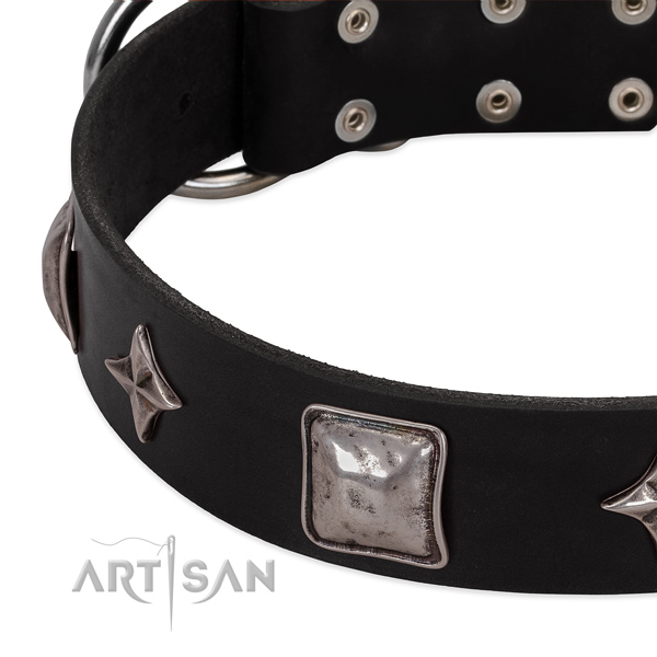 Stylish adorned leather dog collar for daily walking