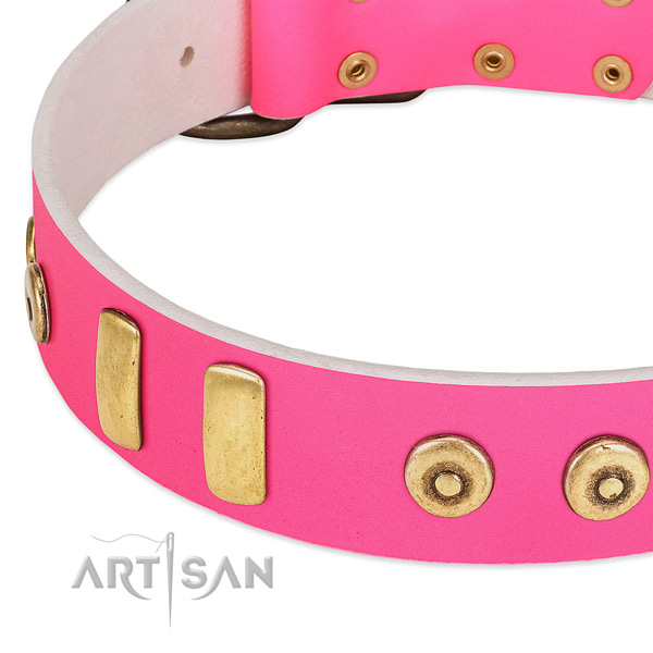 Top rate full grain genuine leather dog collar with exquisite adornments