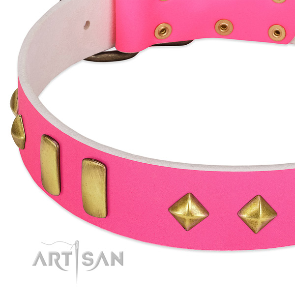 Soft full grain genuine leather dog collar with fashionable studs