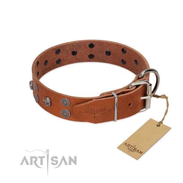 Gentle to touch full grain genuine leather dog collar with embellishments for walking