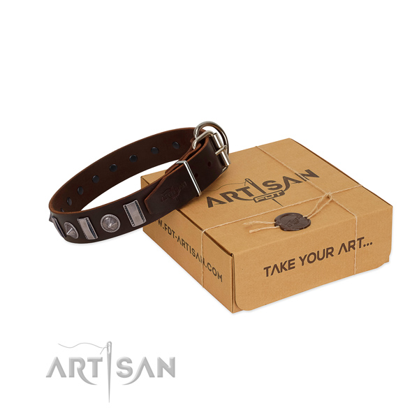 Fashionable leather dog collar with rust-proof hardware