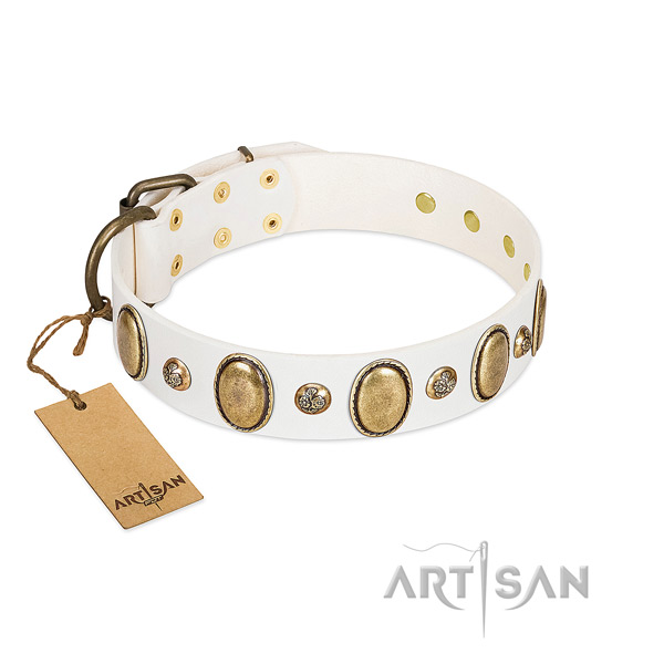 Leather dog collar of best quality material with stunning decorations