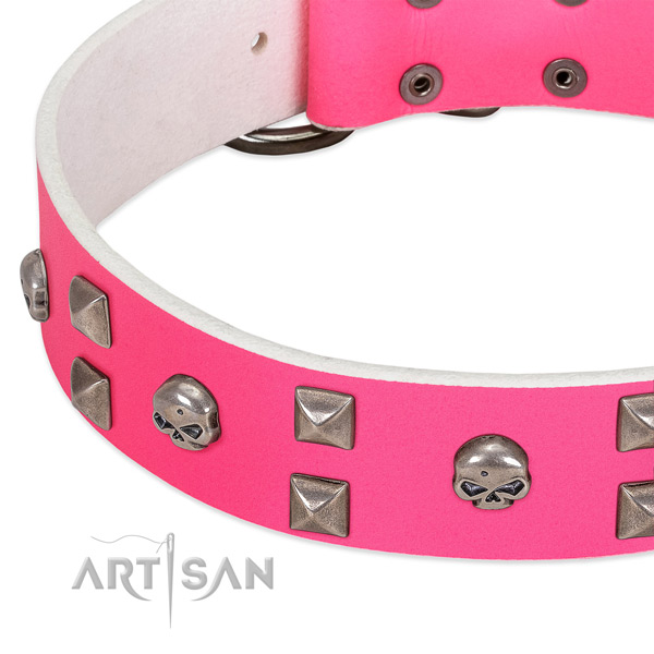 Full grain natural leather collar with extraordinary studs for your four-legged friend
