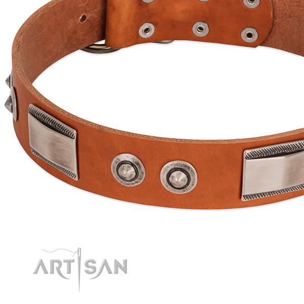 Fine quality genuine leather collar with embellishments for your pet