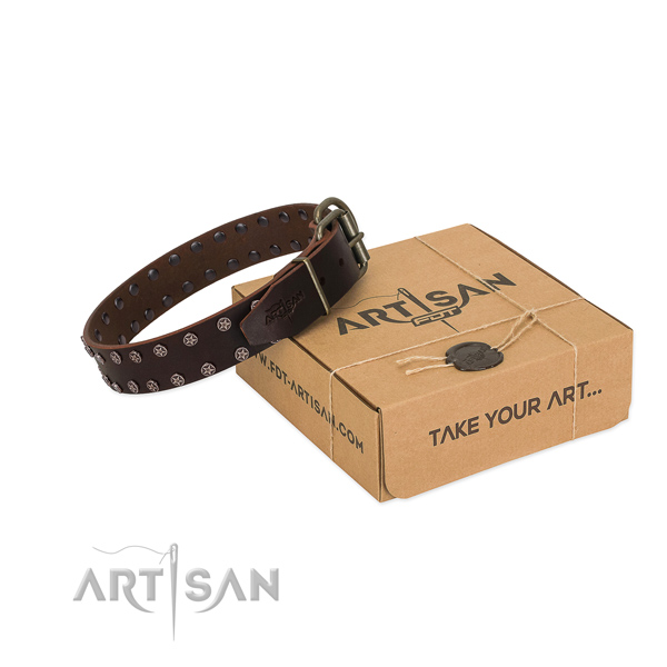 Top rate leather dog collar with decorations for your beautiful pet