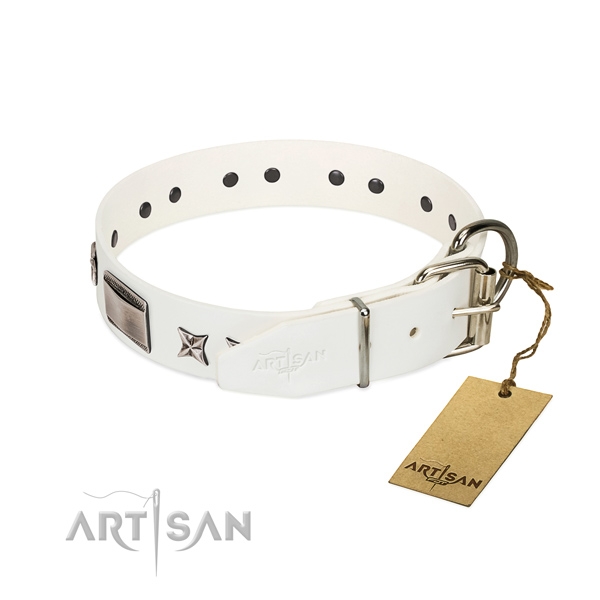 Significant collar of full grain natural leather for your impressive four-legged friend