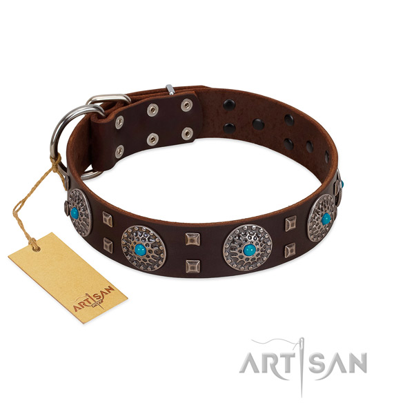 Walking full grain leather dog collar with amazing embellishments