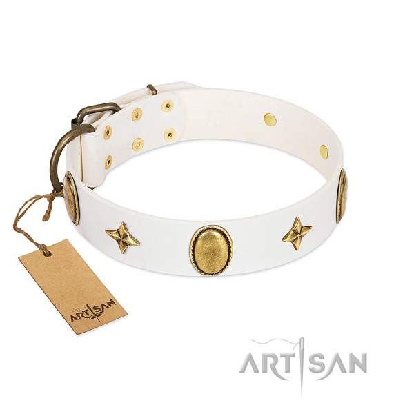 Soft natural leather collar with fashionable adornments for your dog