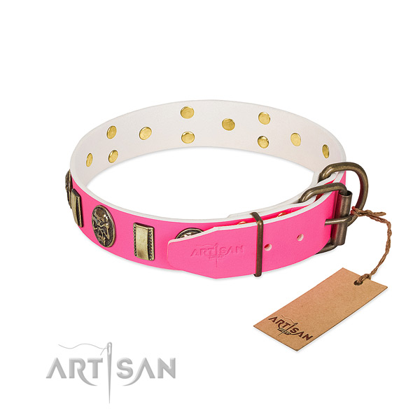 Corrosion resistant fittings on genuine leather dog collar for your dog