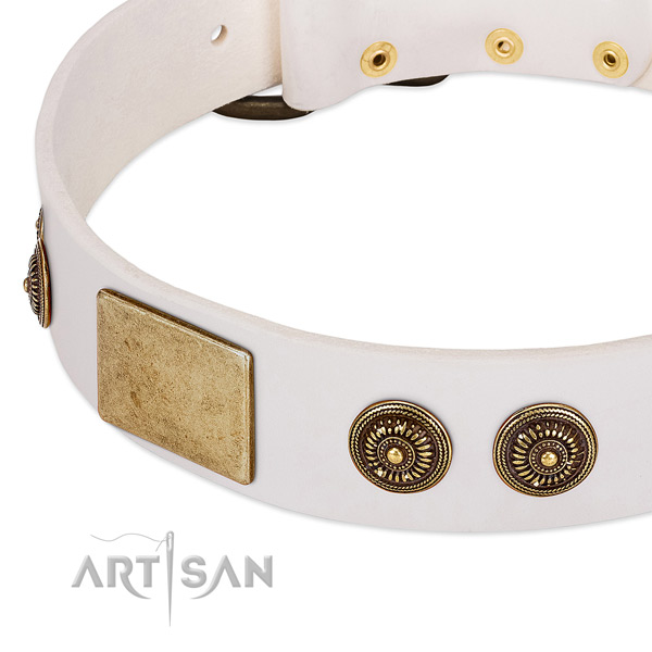 Easy wearing dog collar created for your stylish four-legged friend