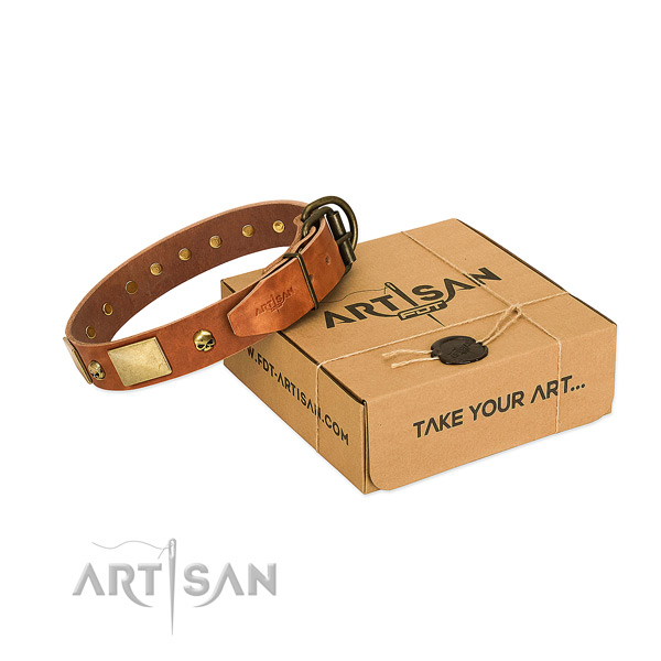 Durable full grain leather collar with rust-proof decorations for your dog