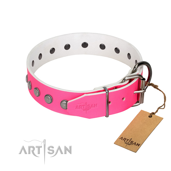 Stylish decorations on natural leather collar for everyday use your four-legged friend