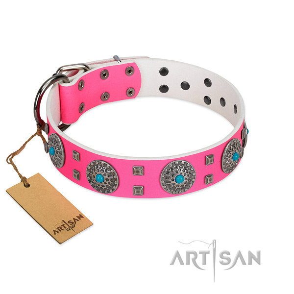 Comfortable wearing full grain leather dog collar with impressive embellishments