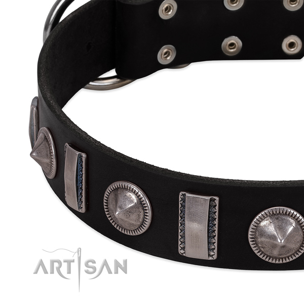 Unique genuine leather dog collar with rust resistant studs