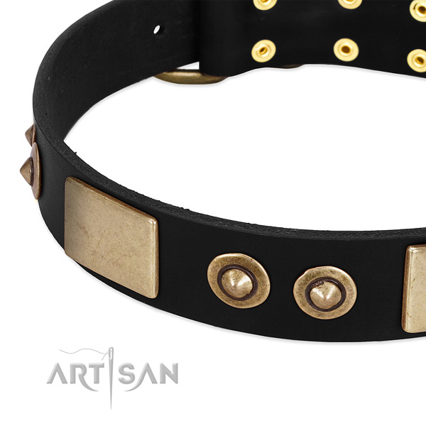 Durable buckle on leather dog collar for your canine
