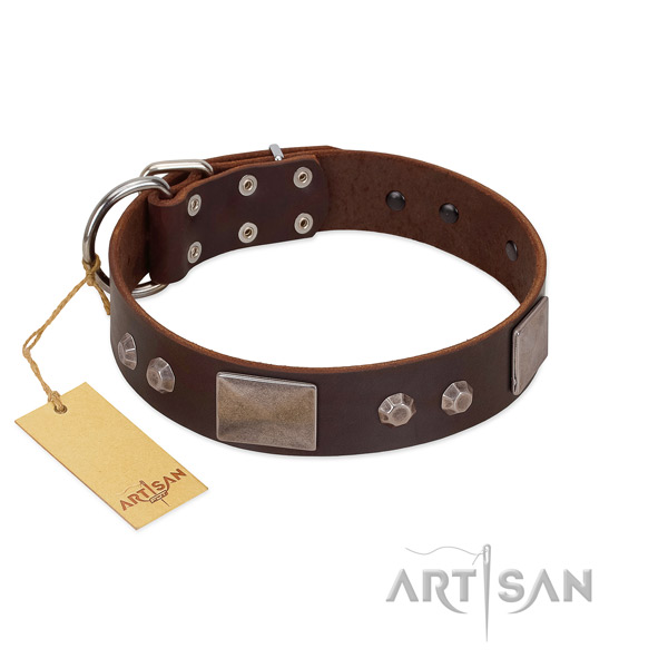 Comfortable genuine leather dog collar with corrosion resistant fittings