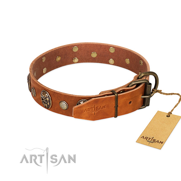 Corrosion proof traditional buckle on genuine leather collar for daily walking your pet