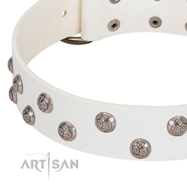 Genuine leather dog collar with strong hardware and embellishments
