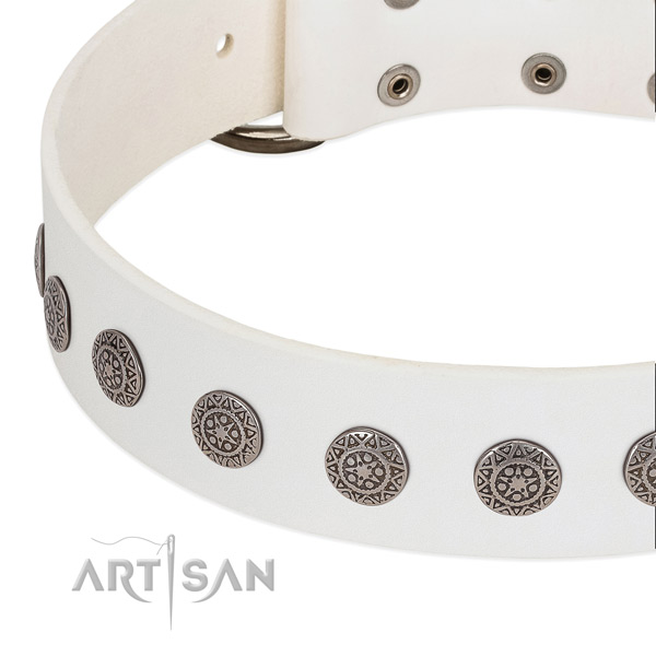 Stylish genuine leather collar with adornments for your pet