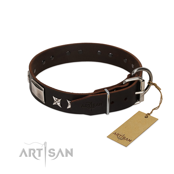Exceptional collar of genuine leather for your beautiful four-legged friend