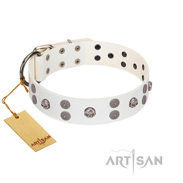 Everyday use decorated genuine leather collar for your doggie