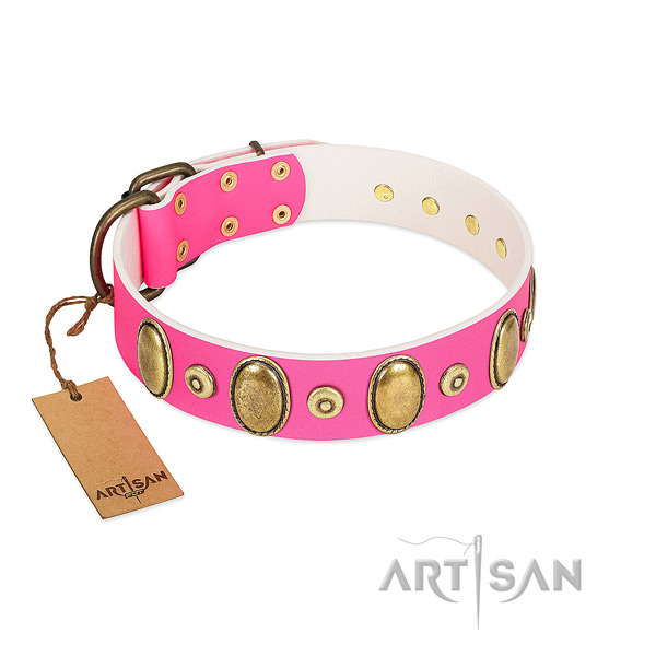 Best quality leather collar with corrosion proof adornments for your dog