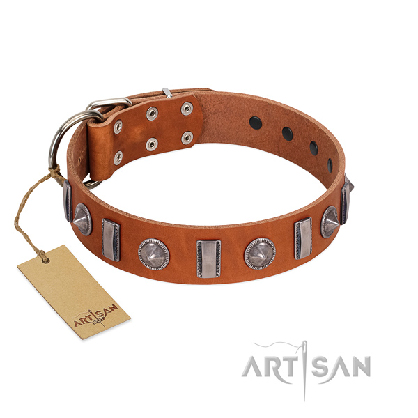 Soft to touch full grain natural leather dog collar with studs for everyday walking