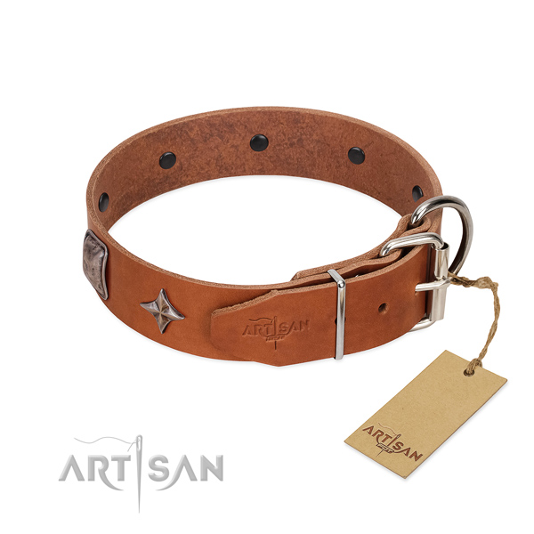 Top rate natural leather dog collar with amazing studs