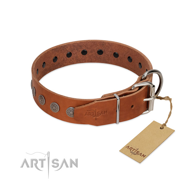 Extraordinary adornments on leather collar for daily walking your pet