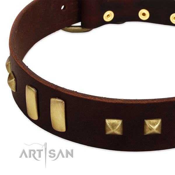 High quality leather dog collar with adornments for comfortable wearing