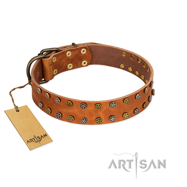 Stylish walking top rate genuine leather dog collar with embellishments