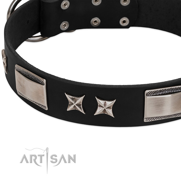 High quality full grain leather dog collar with durable hardware