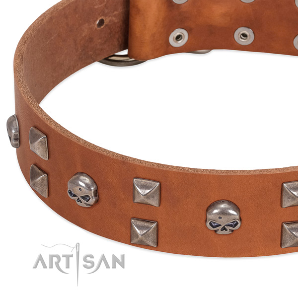 Best quality natural leather dog collar handmade for your canine
