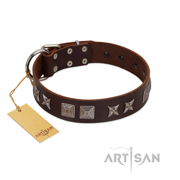 Natural leather dog collar with stylish decorations handmade four-legged friend