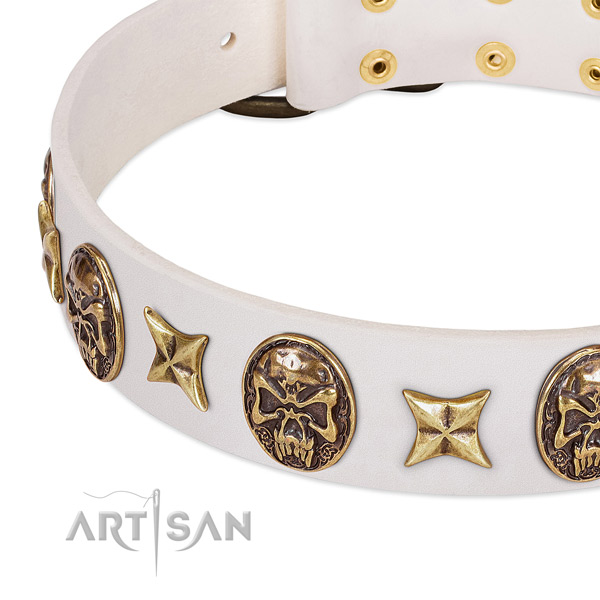Awesome dog collar crafted for your stylish dog