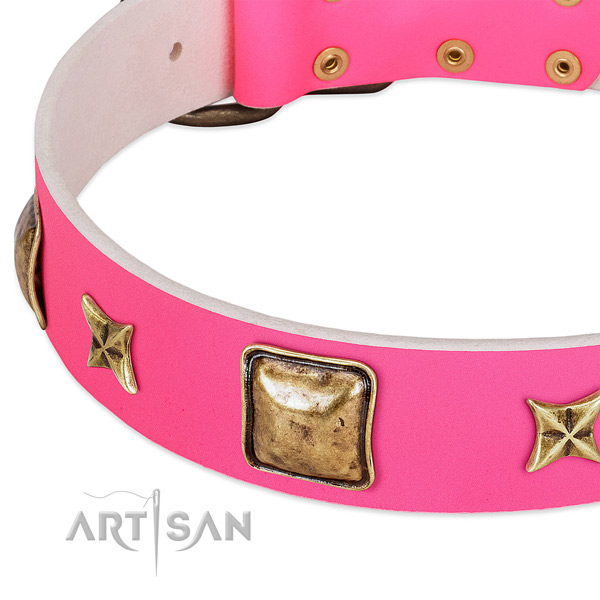 Full grain natural leather dog collar with impressive decorations