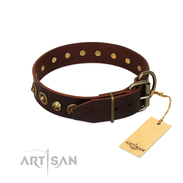 Leather collar with remarkable embellishments for your doggie