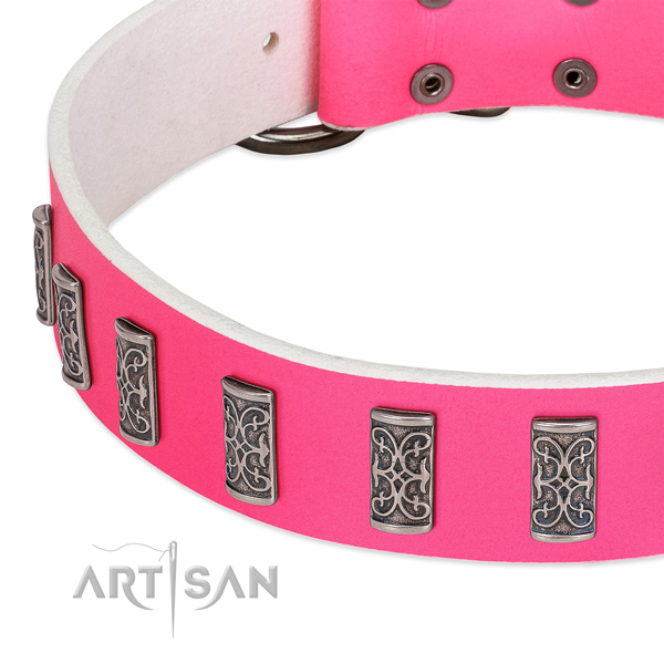 Top notch genuine leather collar for your doggie daily walking